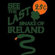 Snake Of Ireland