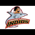 indios_shirt