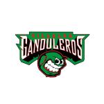 logo_tshirt_gandu