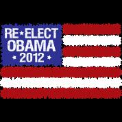 reelect obama 2012