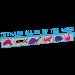 tryhardruler.png