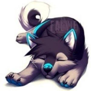 cute wolf