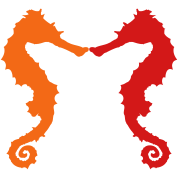two seahorse shapes kissing
