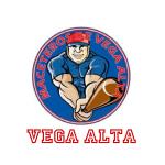 vega_alta_shirt_logo
