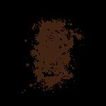 trail_running_rocks_brown_black_opt