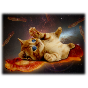 bacon cat in space.png