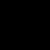 Black Sun Scarab Beetle
