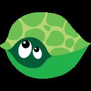 Cute Turtle Maternity