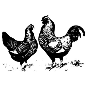 Vintage Rooster and Hen - farm style