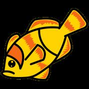 clown fish nemo left