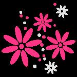 spring, summer, flower, birthday