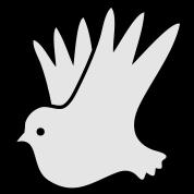 peace dove pretty world peace