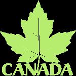 Gold Canada Souvenir Art