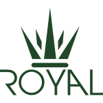 Royal Crown Design Flat