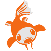 cool koi fish alone goldfish