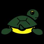 Baby Got Back : Turtle