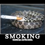 smokingcoollikesnakes