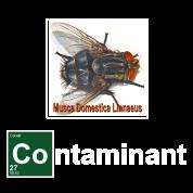 Breaking Bad Fly Contaminant