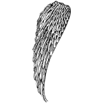 Angel Wing Left