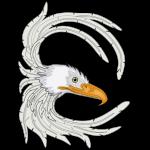 eagle_copy