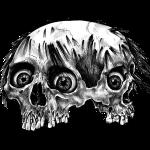 Siamese Skull