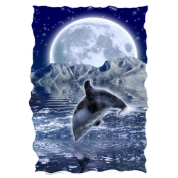 DOLPHIN & MOUNTAIN MOON