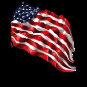 Bold Flag