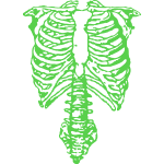 Nigel Tufnel Green Ribs Skeleton Anatomy