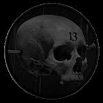13 b/w logo