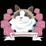 Raaawr Cat