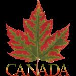 Canada Maple Souvenirs