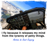 I fly because... Cockpit