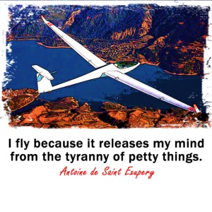I fly because... Glider