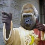 buddy_gorilla222