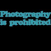 Rock star Photography