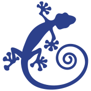 Spiral tail gecko