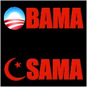 Obama Killed Osama