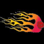 sixonfire