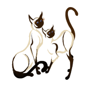 Two Siamese Cats