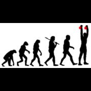 Evolution Kettlebell Double Press