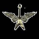 guitar/wings