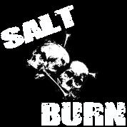 Salt and Burn Skullz 3