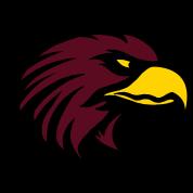 Eagle color USA