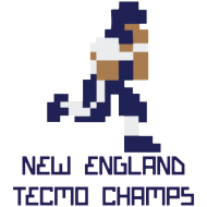 Design ~ New England Tecmo Champs