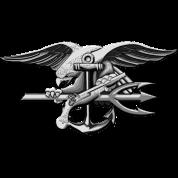 US Navy Seal Team VI Grey