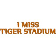 Design ~ I Miss Tiger Stadium