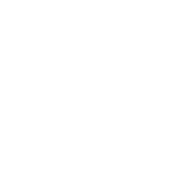 Taylor Gang Over Everything Taylor Gang