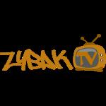 zybaktv_vector