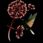 Dandelion and Hummingbird