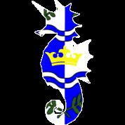 atlantia_heraldic_seahorse_7